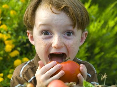 Organik Ürünlerle Beslenme