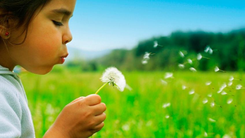 Alerjik Çocukları Polenlerden Uzak Tutmak İçin