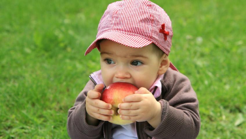 Bebeklere Hangi Meyveler Verilmeli?